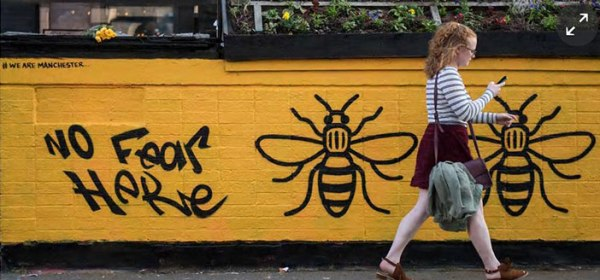 Manchester Bees Still Buzz Framed Prints By Joekeo Redbubble